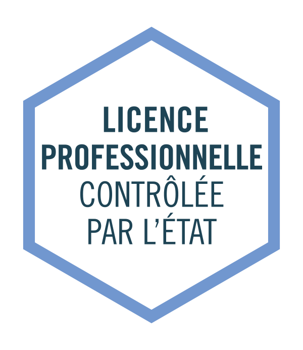 Formation contrôlée par l'état Licence pro